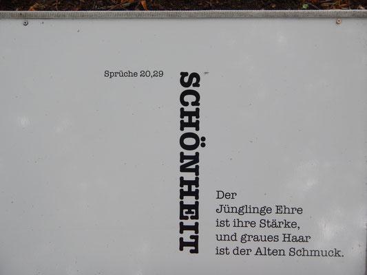 Bibelgarten Im Johanniskloster
