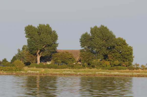 Das Fischerhaus am Olpenitzer Noor