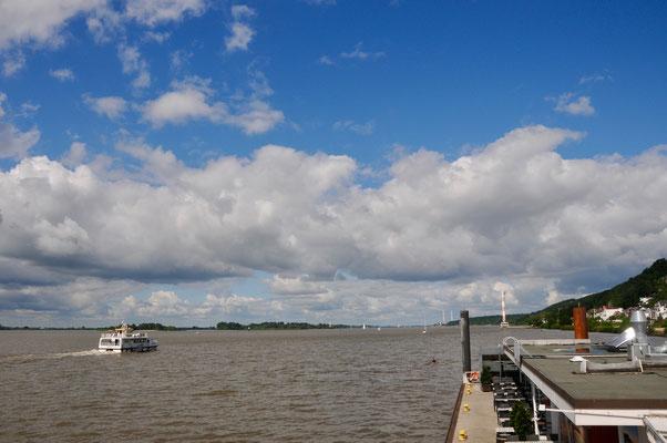 """auf zur """"aracanga"""" im Gambia River"""