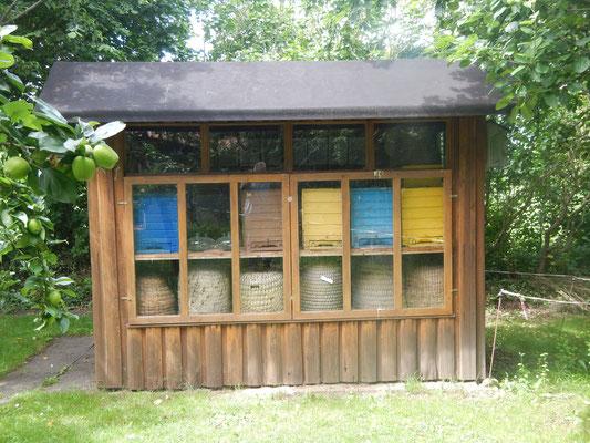Bienenstöcke Mühle Anna