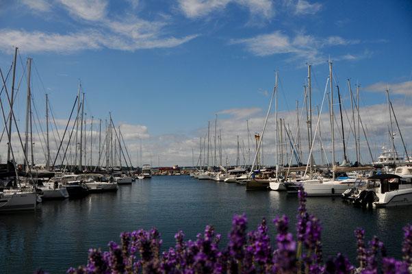 Baltic Bay Marina, teilweise auf dicke Hose, aber nett. Besonders die Hafenmeister