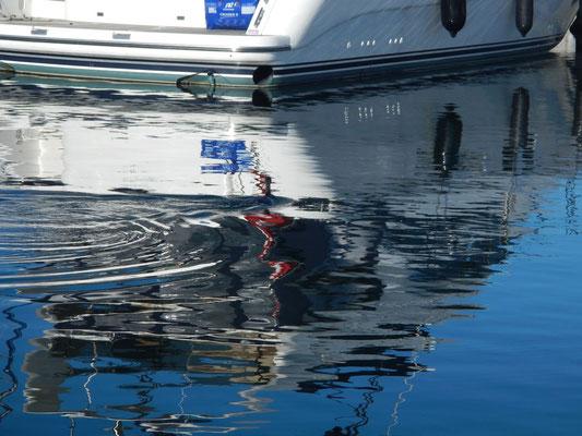 Kormoran taucht nach Fischen im Hafen