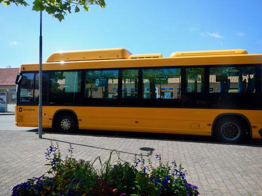 Bustrafik- for fri
