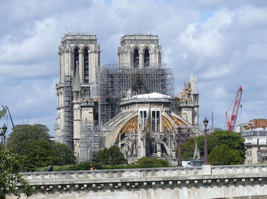 Visit Notre Dame cathedral after the fire