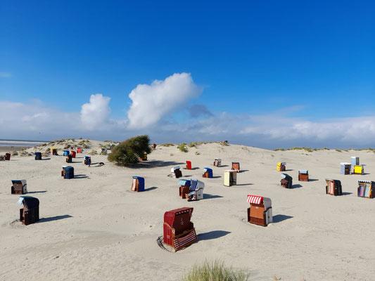 Strandkörbe Hundestrand Nordbad Insel Borkum / Nordsee