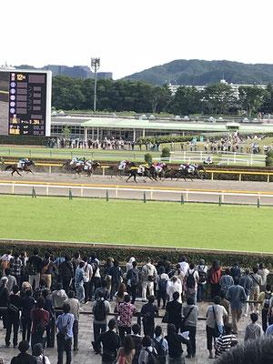 初めて複勝を当てた東京競馬場