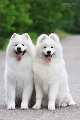 Буян и сын Уильям Белый Волк