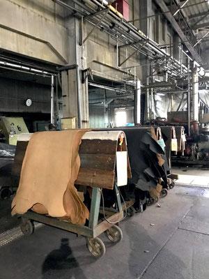 工場内での皮の移動は、馬と呼ばれる台車にて