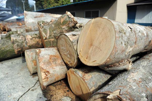 原木買い付け