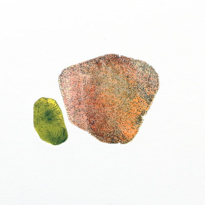 Tiny stony friends V, intaglio & Hayter technique, 2 pl.