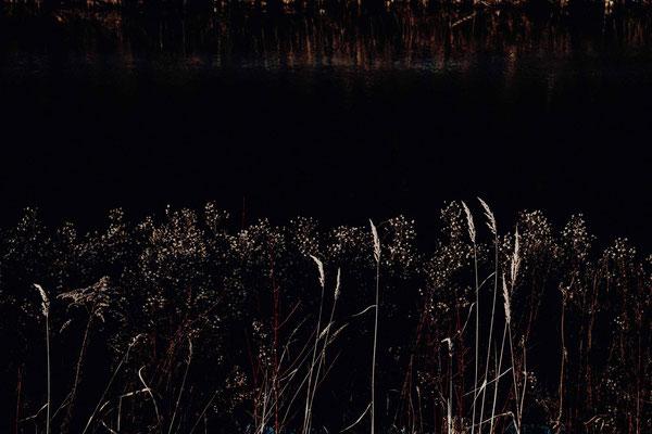 starnberger see - florian paulus