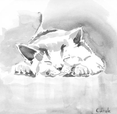 Chat Heureux, Aquarelle, 20X20