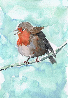 Rouge gorge, Aquarelle