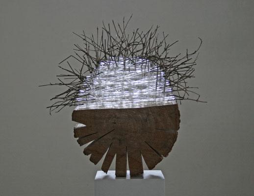 """""""Baumzelle6"""", 2013, 30cm Durchmesser, Holz, Glasrohre"""