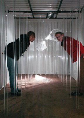 """""""Zellwanderung"""", Im Seecontainer , 2008"""