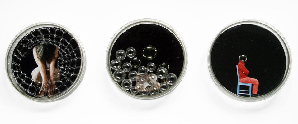 """""""Entrückt"""", 2013, Fotografie und Glas in Petrischale, jeweils 15cm Durchmesser"""