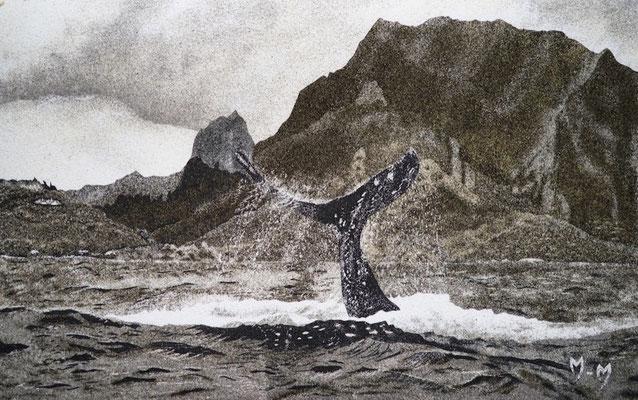 Baleine à Moorea - 30 x 47,5 - VENDU