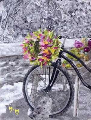Vélo - 30 x 40 - À VENDRE
