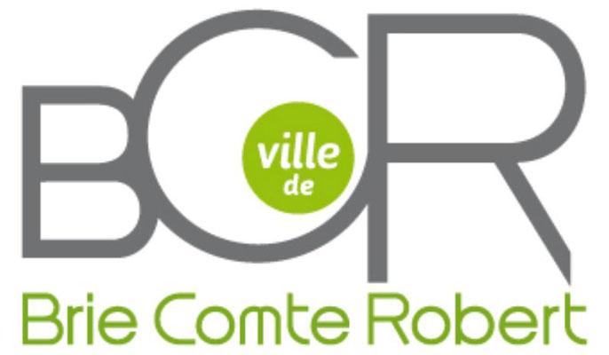 Brie Comte Robert