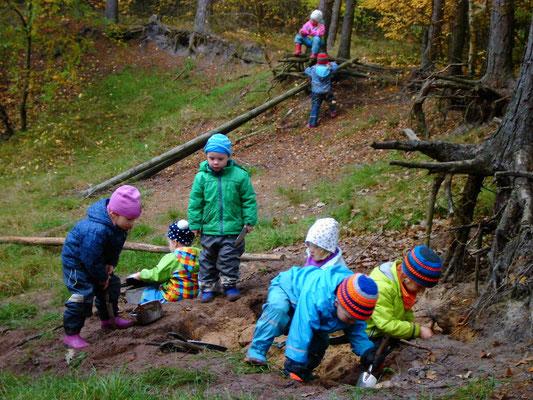 ... immer noch im Waldcamp.