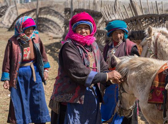 """In der Umgebung von 香格里拉 (""""Shangri-La"""") trifft man immer wieder auf als Nomaden lebende Tibeter, die sich der Pferde- und der Yak-Zucht verschrieben haben. Die Region wird mehrheitlich von Tibetern bewohnt."""