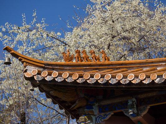 """Tempeldach mit Dachreiter am LUGU HU 泸沽湖 (""""Lugu-See"""")."""