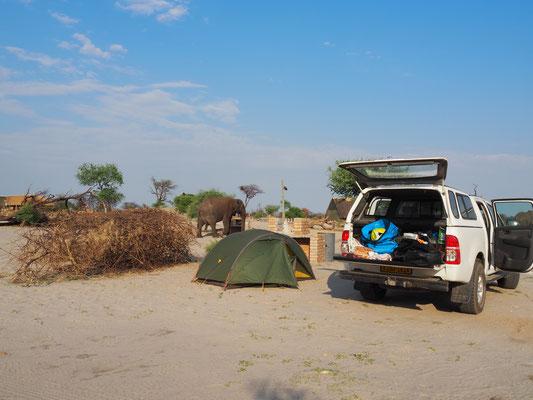 Größenvergleich: Unser Zelt und der Elefant im Hintergrund