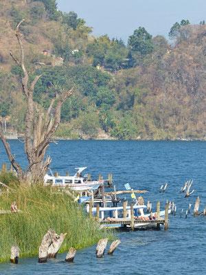 Ufer San Marcos Atitlán-See