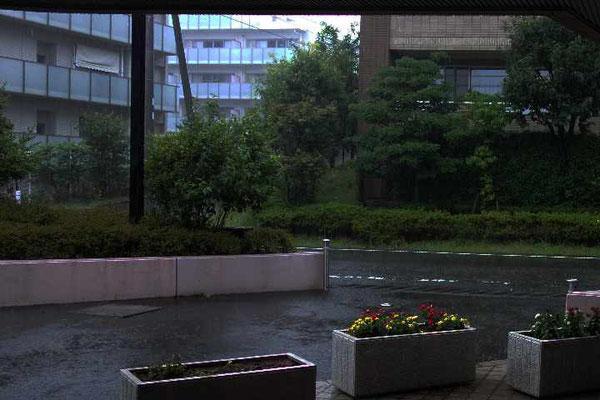 雨天決行!との連絡。ディナーの始まるまでは風雨も強かったのですが、終わる頃には収りました。幸運