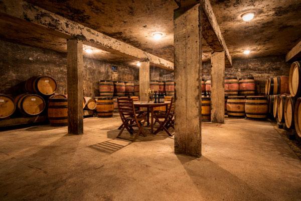 Wijnkelder in Gevrey Chambertin