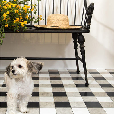 Plaid marble floors for a stylish pooch.