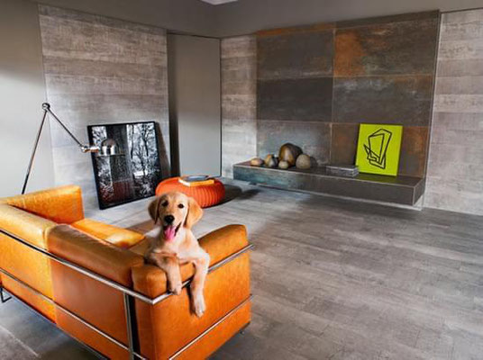 This chic pup is living in high style.