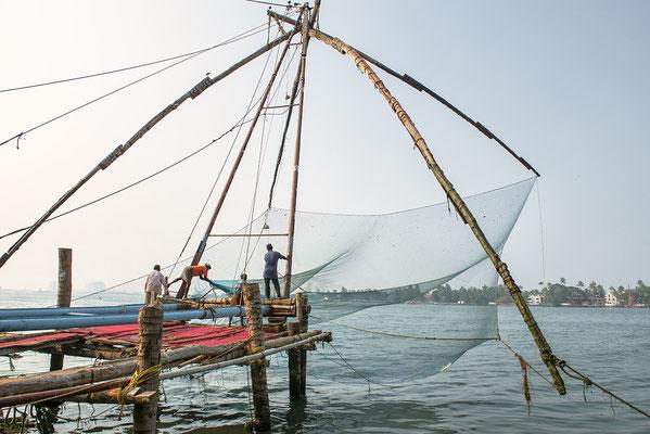 Chinesisches Fischernetz, Kochi in Kerala