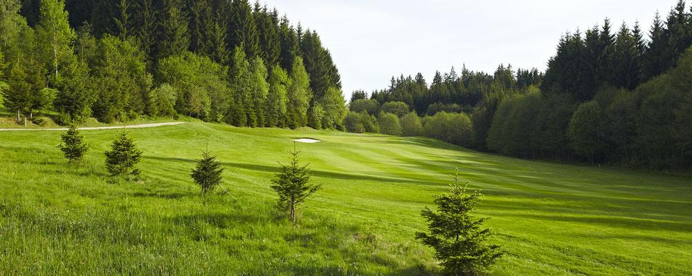 Golfpark Böhmerwald .. Foto: OÖ Tourismus/Erber