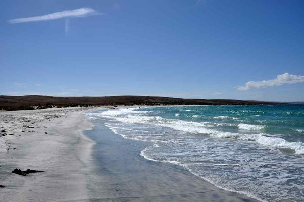 wieder am Meer, Port Lincoln