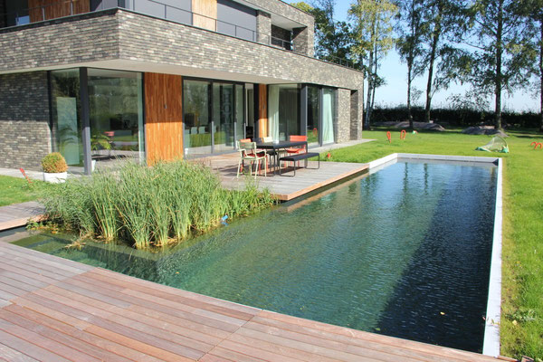 Piscines naturelles de style contemporain - Water Garden