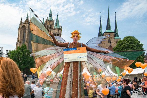 Engel zur zentralen Veranstaltung zum Tag der Organspende in Erfurt