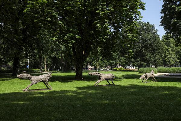 OLIVIER ESTOPPEY Des loups qui traversent la nuit 2009-2010