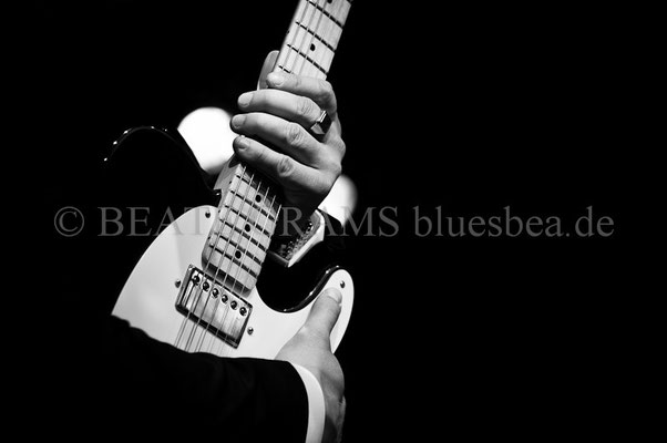 Latvian Blues Band - BluesBalticaEutin, 05.2014