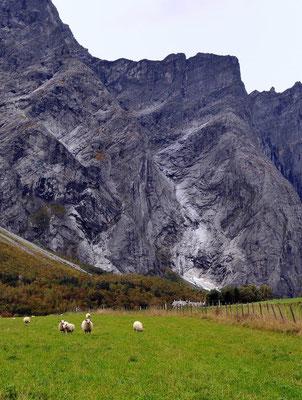 Romsdalen: senkrechte Felswände bis 1000m