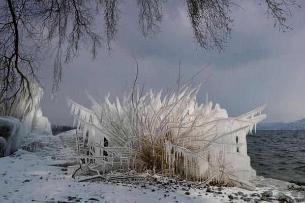 Eisstrukturen, Schweizer Seeufer; 27.2.2018