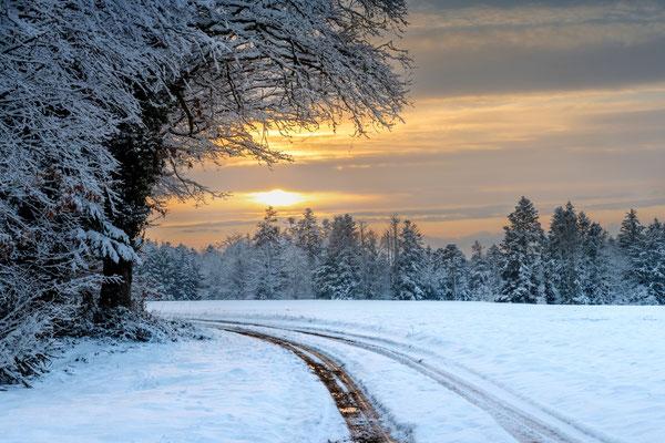 Morgenlandschaft im Südschwarzwald; 11.1.2019