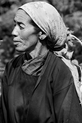 Bauersfrau, polygam (zwei Männer [einzige Kultur der Welt]), Ladakh (Kaschmir, Tante von Jospel Tsering