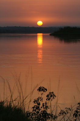 Morgenröte über dem Nil vor Murchison