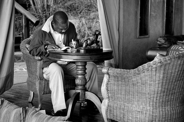 Buchhalter des Migration Camp, Serengeti (Tansania)