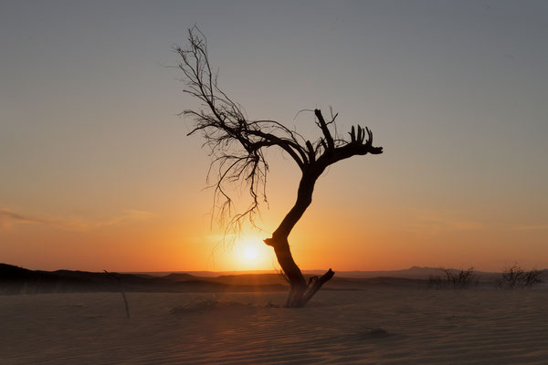 Abendstimmung in den Dünen der Kavir Wüste