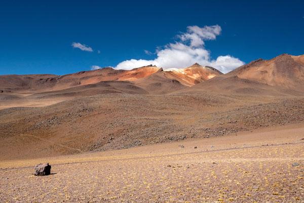 Valle de las Damas del Desierto