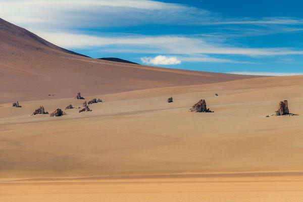 Salvador Dali Wüste