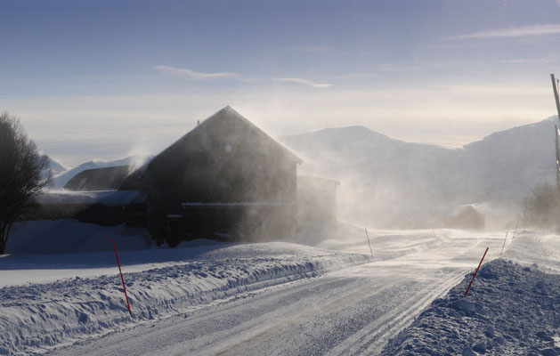 Sturmwinde beim eisklaren Fjord