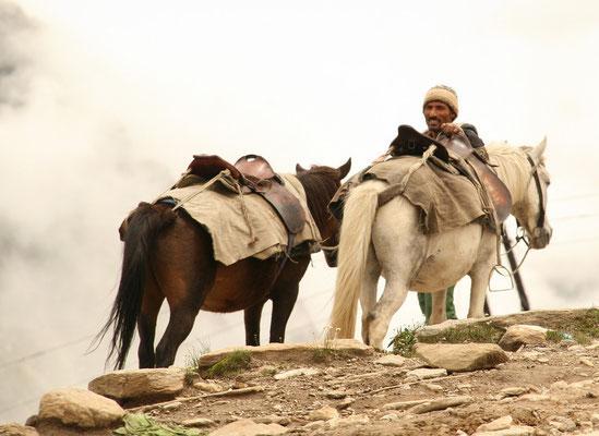 Leh-Manali Transhimalaya: Rohtang La, Transportgeschäft auf 4000m